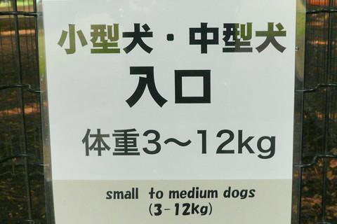 小型犬・中型犬.jpg