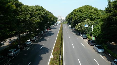 井の頭通り(ハイビジョンサイズ).jpg