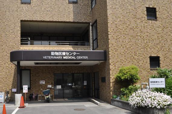 動物医療センター.JPG
