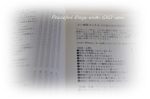 07七十のチェック項目.jpg